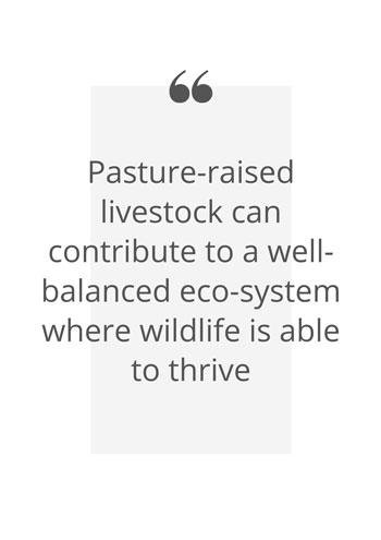 Pature raised livestock quote