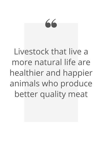 Happier animals quote
